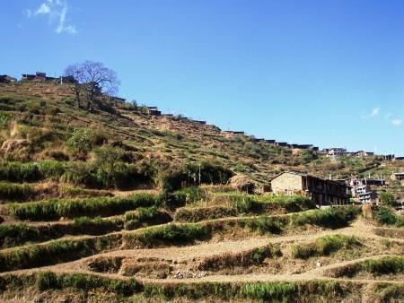 Trek dans le Langtang   Jour 2 : Dunche   Bamboo thulo syabru langtang 450x338