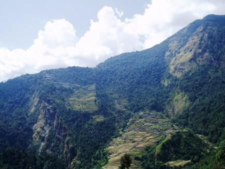 Tour des Annapurnas : Tadapani   Chomrung   Bamboo chomrung trek sanctuaire annapurna nepal 450x338