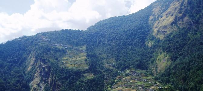 Tour des Annapurnas : Tadapani – Chomrung – Bamboo