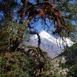 Nepal trekking pictures langtang 2 150x150