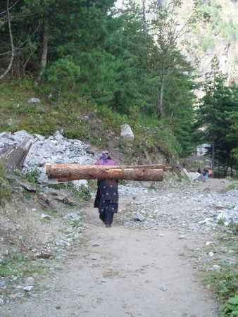 Tour des Annapurnas : Temang   Chame femmes portant des troncs nepal2 338x450