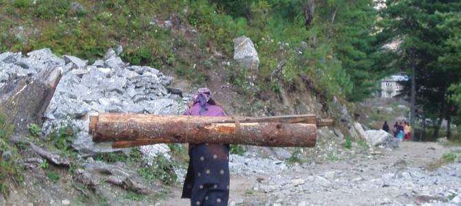 Tour des Annapurnas : Temang – Chame