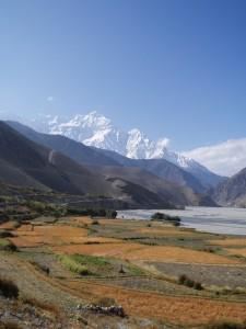 Tour des Annapurnas : Kagbeni   Jomosom   Marpha nilgiri kagbeni tour des annapurnas nepal 225x300
