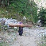 Photos de trek au Népal femmes portant des troncs nepal2 150x150