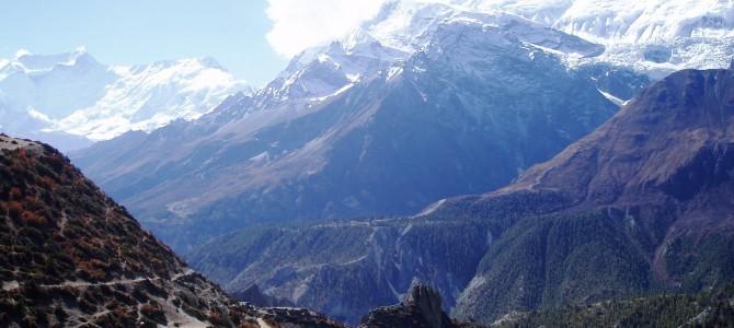 Tour des Annapurnas : Manang – Laddar (Letdar)